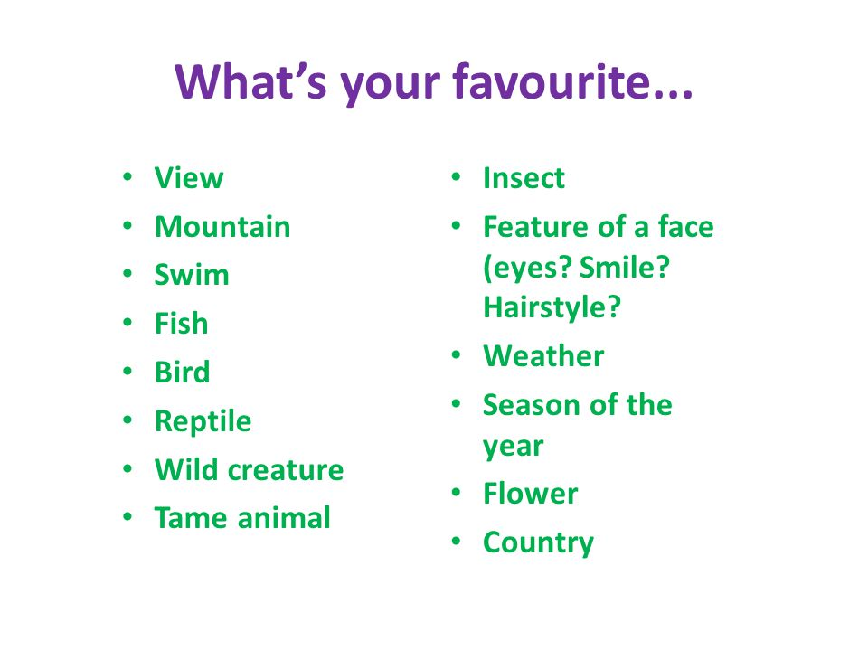 What's your favourite... View Mountain Swim Fish Bird Reptile