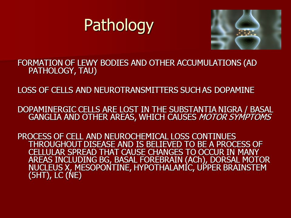 Pathology FORMATION OF LEWY BODIES AND OTHER ACCUMULATIONS (AD PATHOLOGY, TAU) LOSS OF CELLS AND NEUROTRANSMITTERS SUCH AS DOPAMINE.