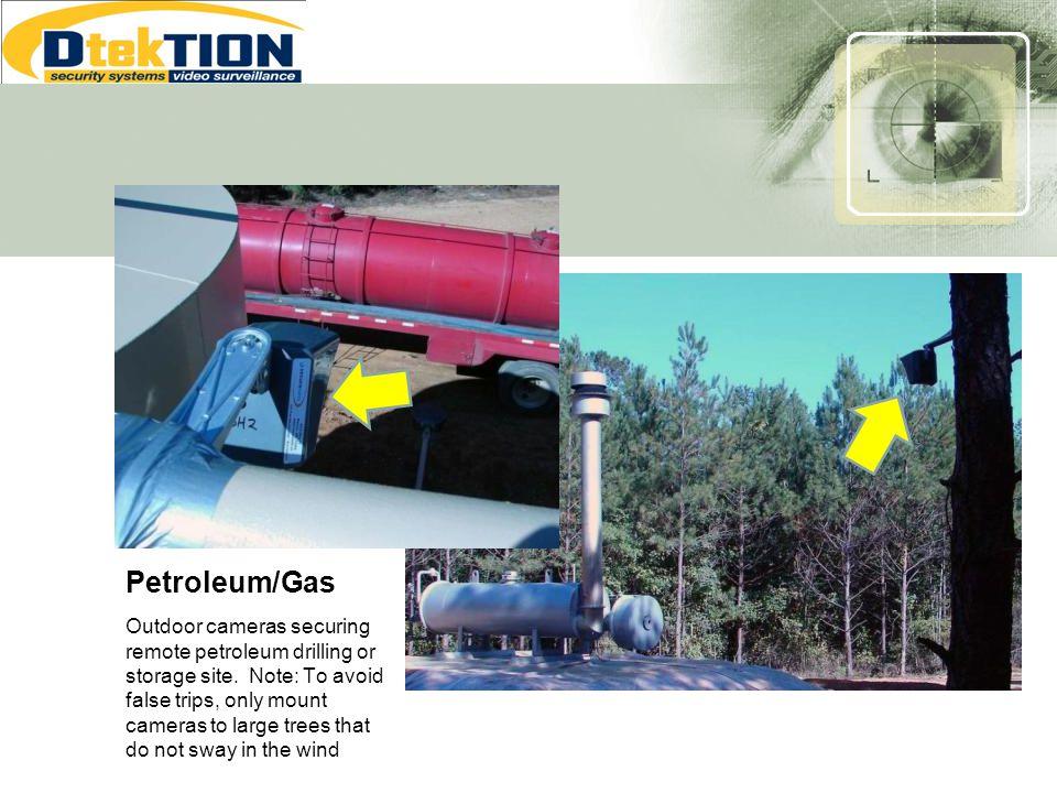 Petroleum/Gas
