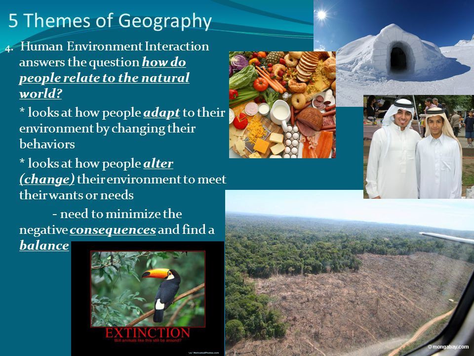 5 Themes of Geography 4. Human Environment Interaction answers the question how do people relate to the natural world