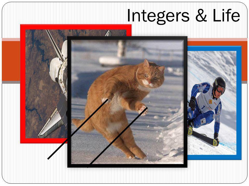Integers & Life