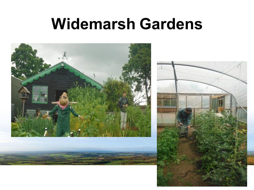 Widemarsh Gardens