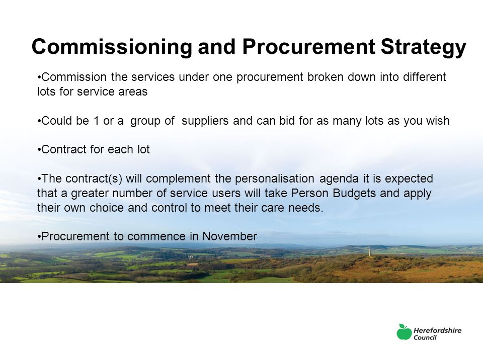 Commissioning and Procurement Strategy