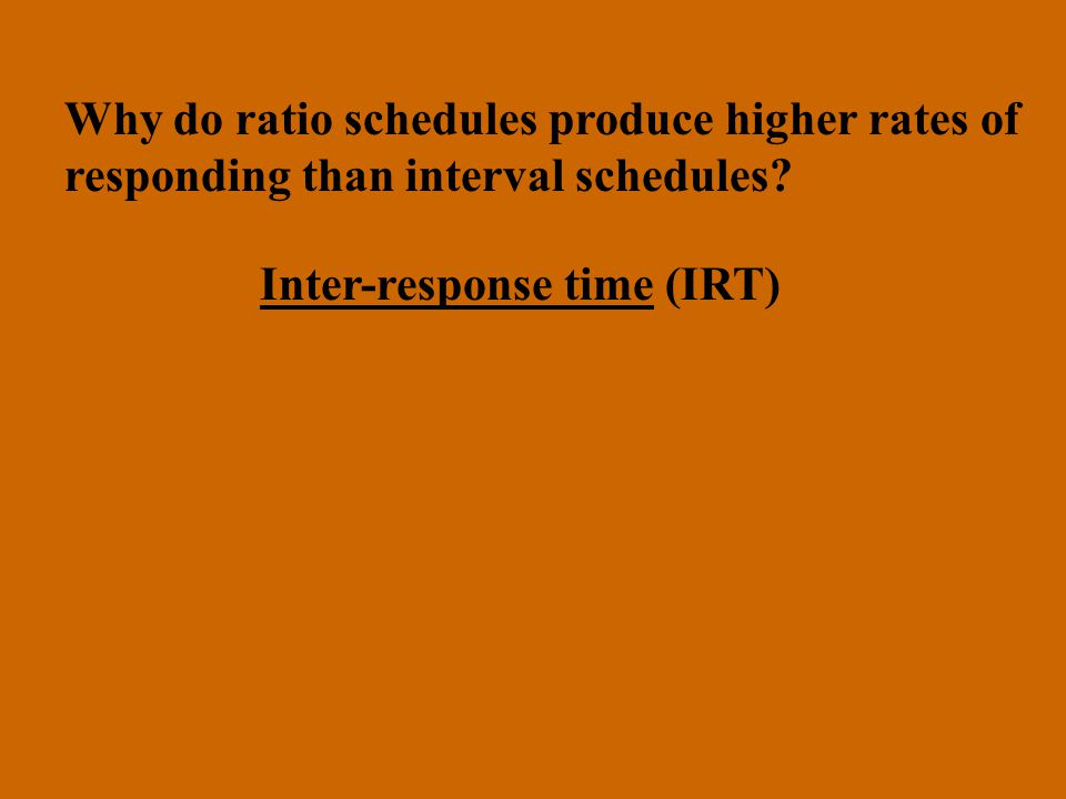 Why do ratio schedules produce higher rates of