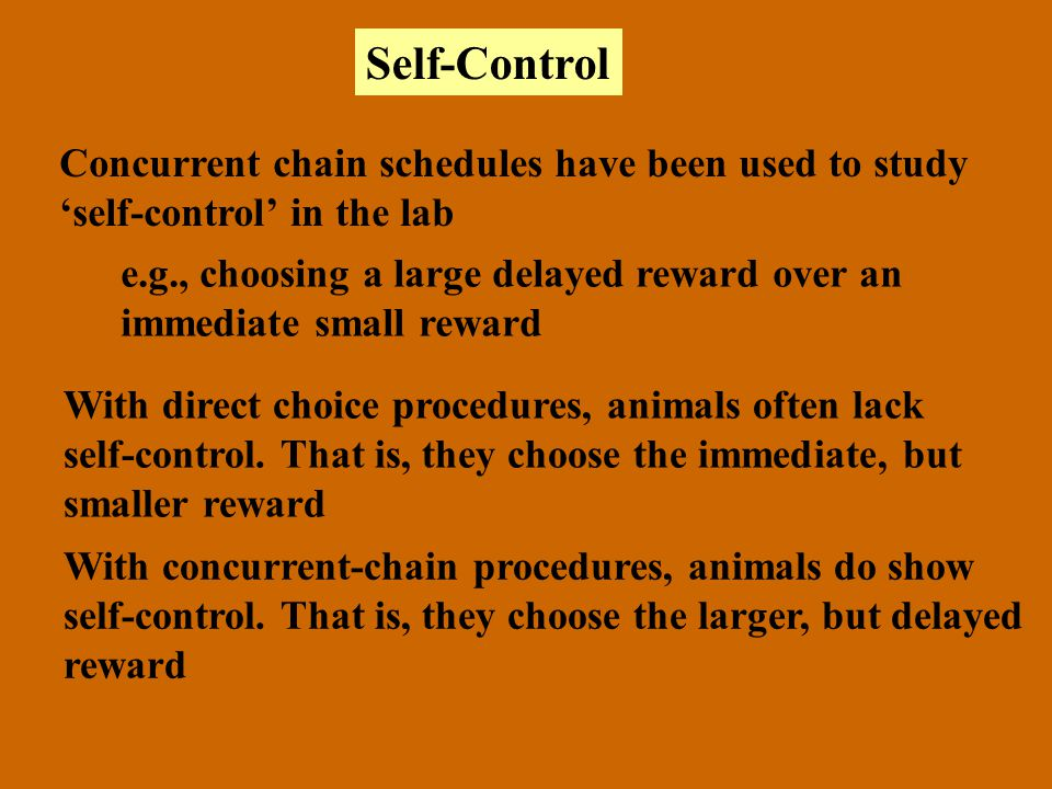 Self-Control Concurrent chain schedules have been used to study