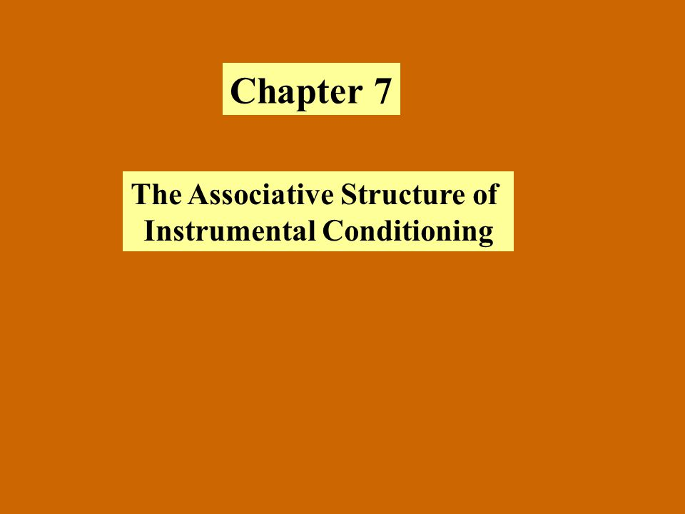 The Associative Structure of Instrumental Conditioning