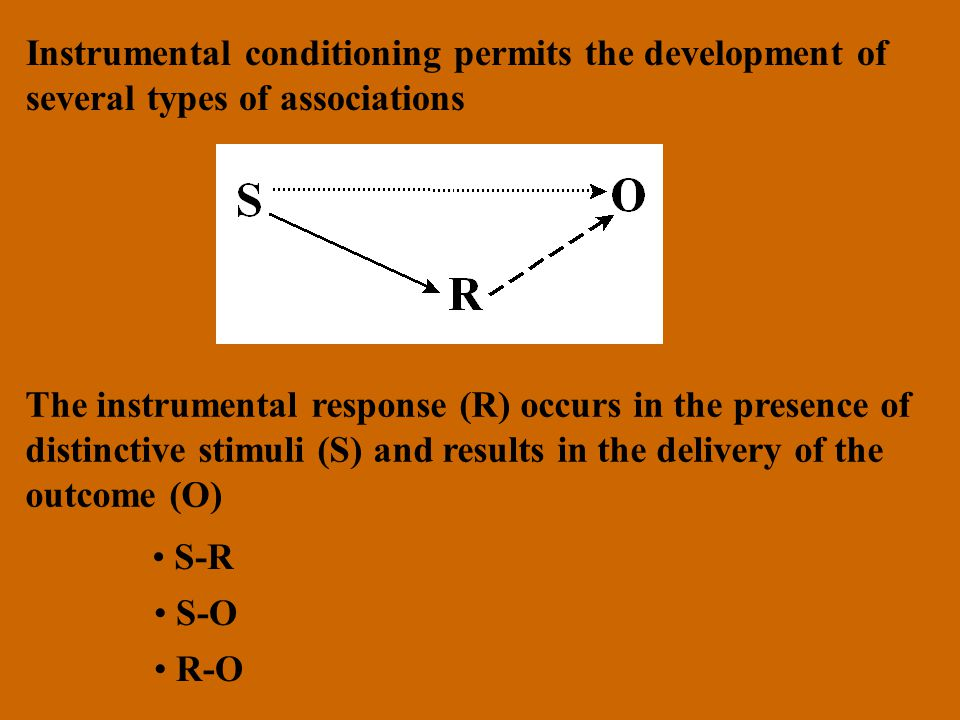 Instrumental conditioning permits the development of