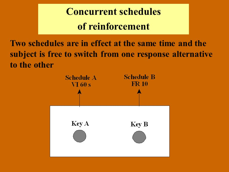 Concurrent schedules of reinforcement