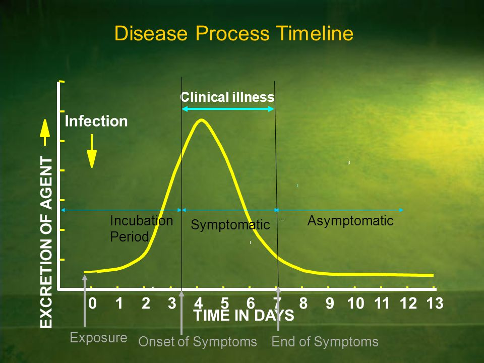 Disease Process Timeline