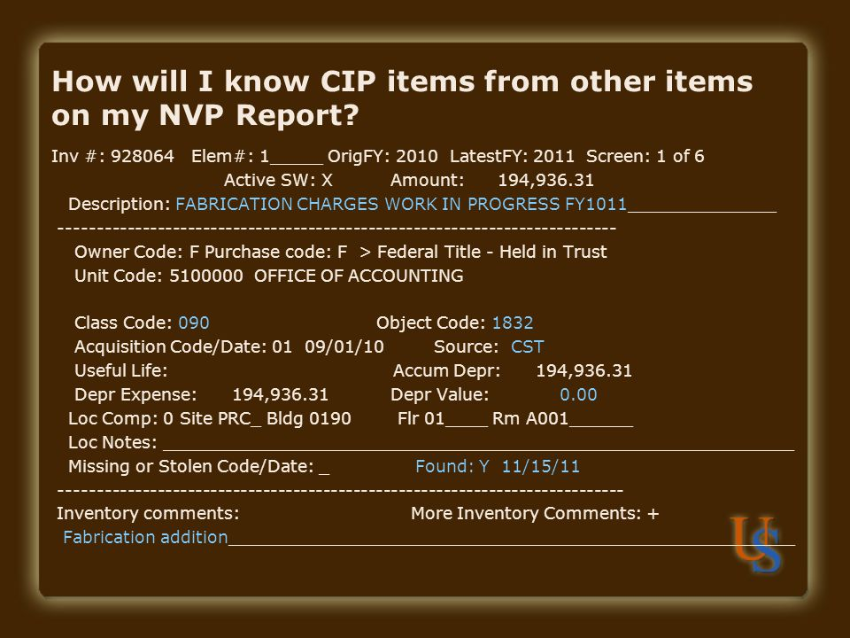 How will I know CIP items from other items on my NVP Report