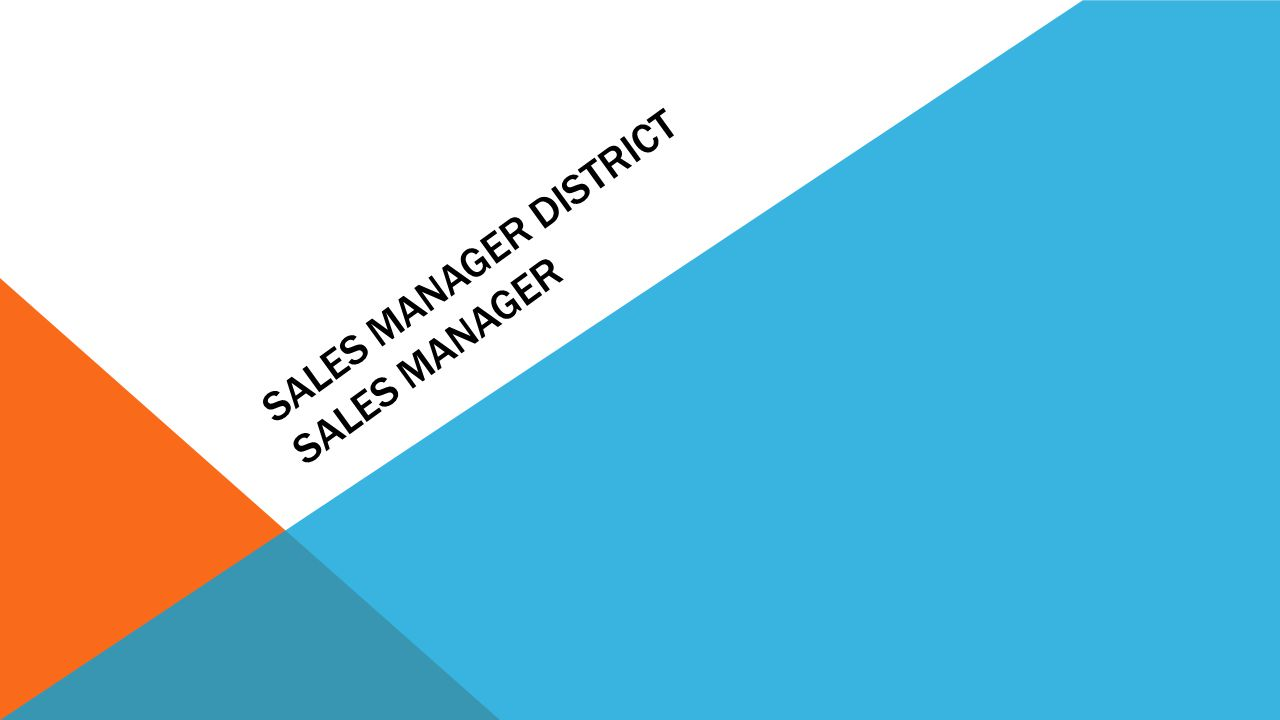 Sales Manager District Sales Manager