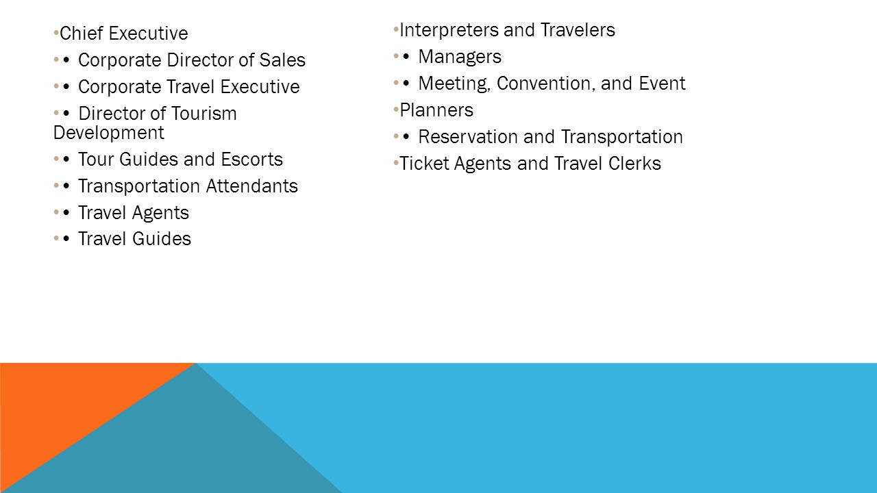 Chief Executive • Corporate Director of Sales. • Corporate Travel Executive. • Director of Tourism Development.