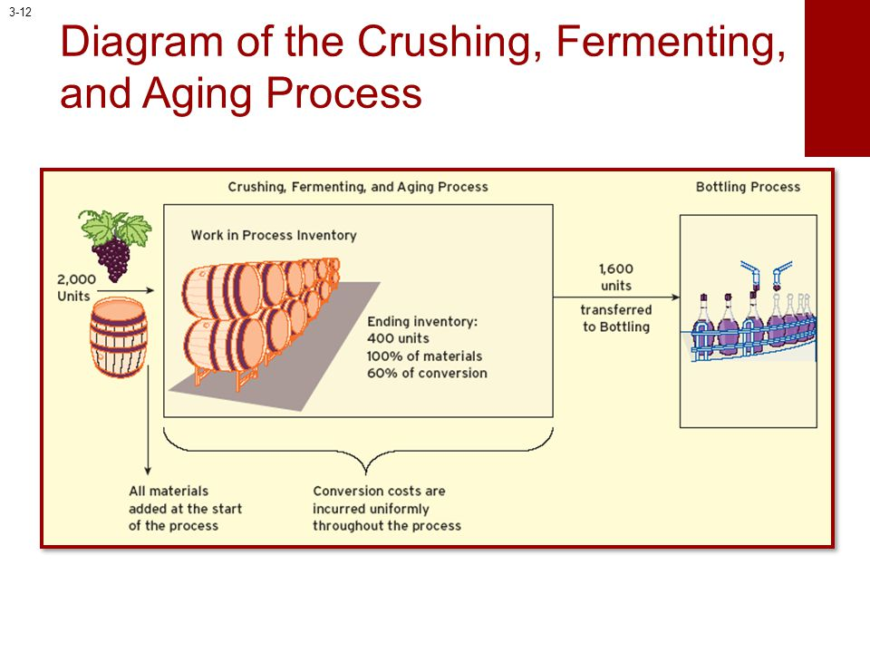 Diagram of the Crushing, Fermenting, and Aging Process