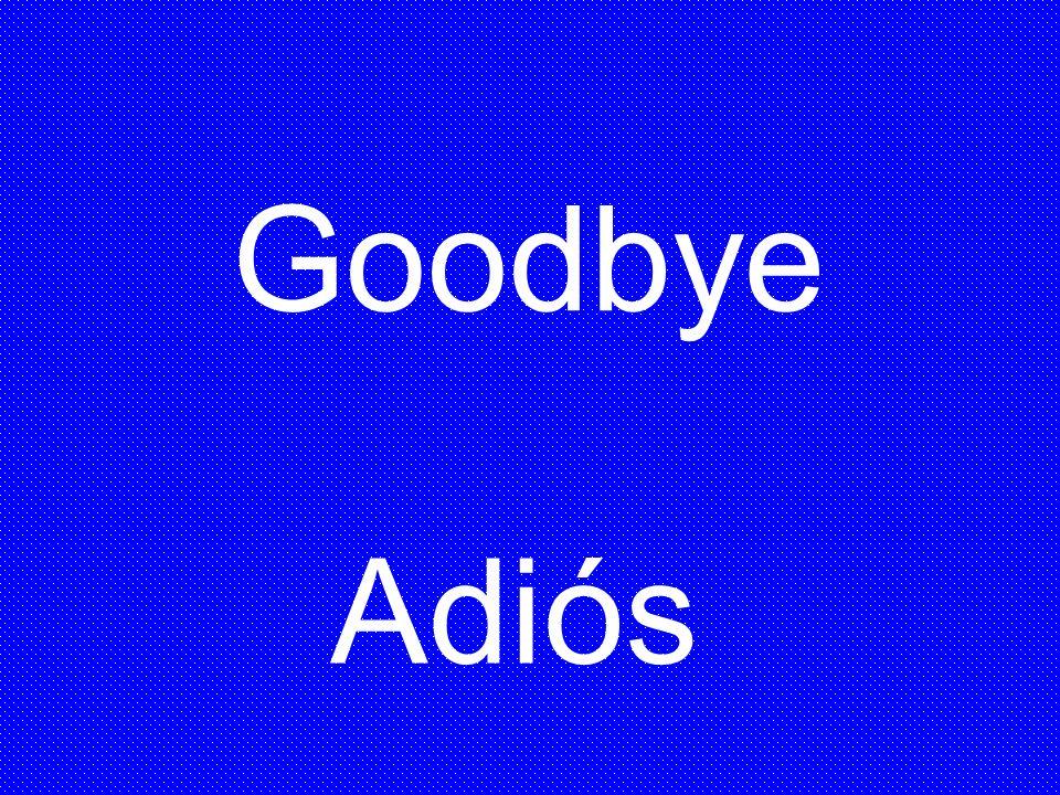 Goodbye Adiós