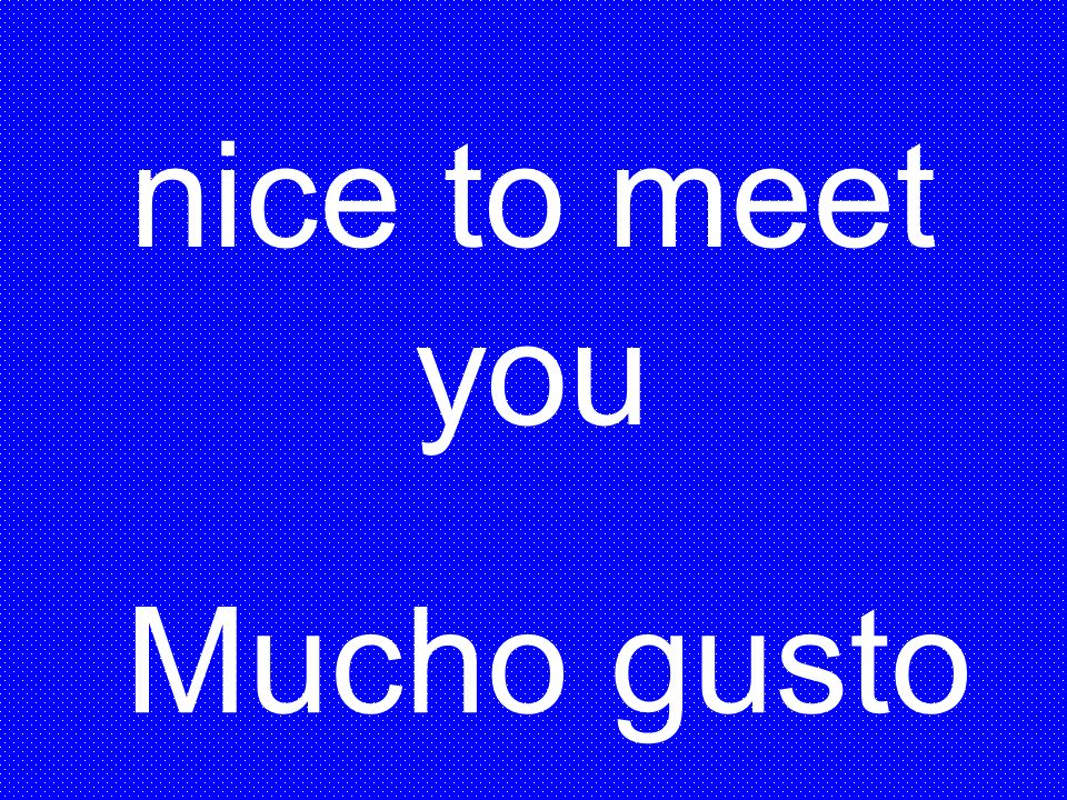 nice to meet you Mucho gusto