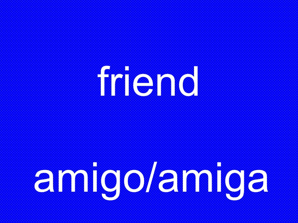 friend amigo/amiga