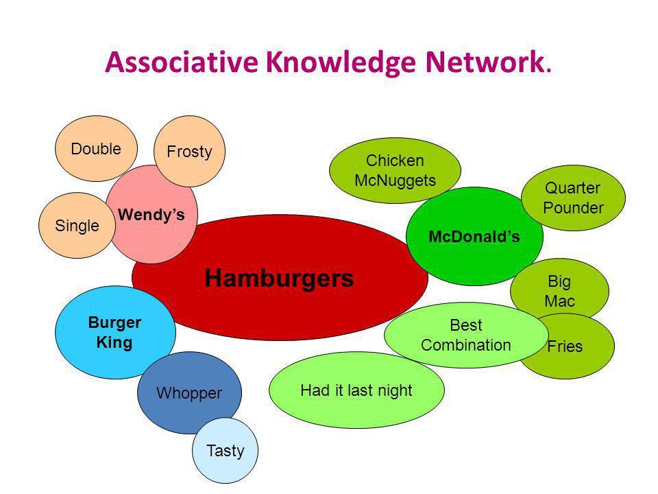 Associative Knowledge Network.