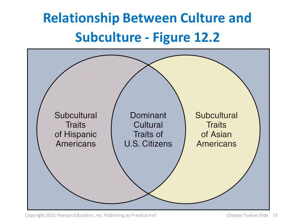Relationship Between Culture and Subculture - Figure 12.2