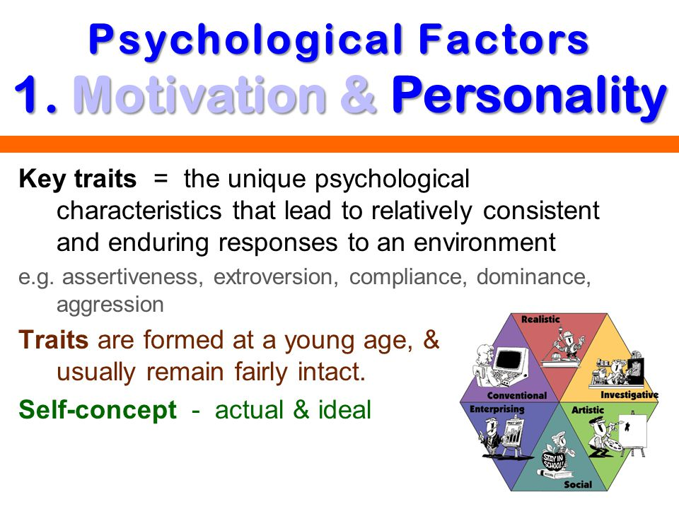 Psychological Factors 1. Motivation & Personality