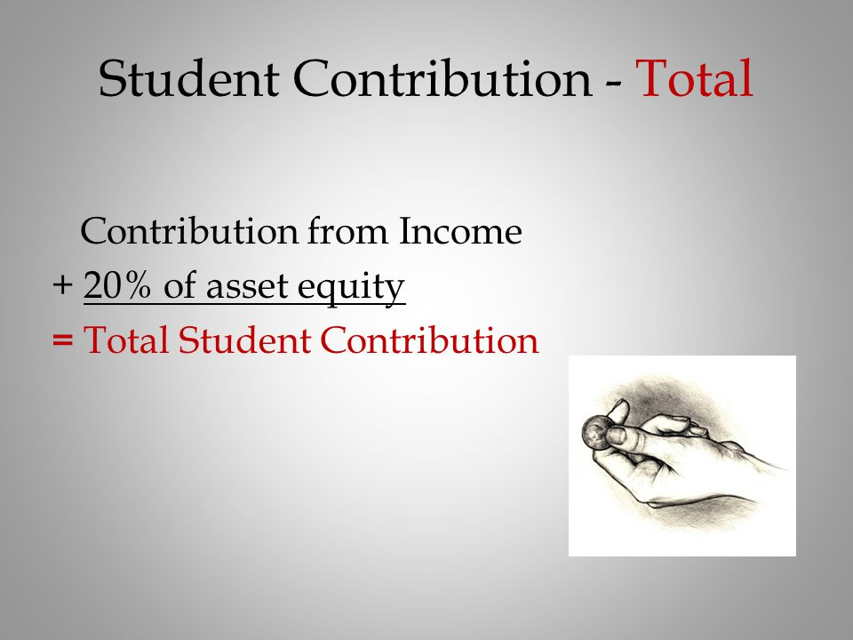 Student Contribution - Total