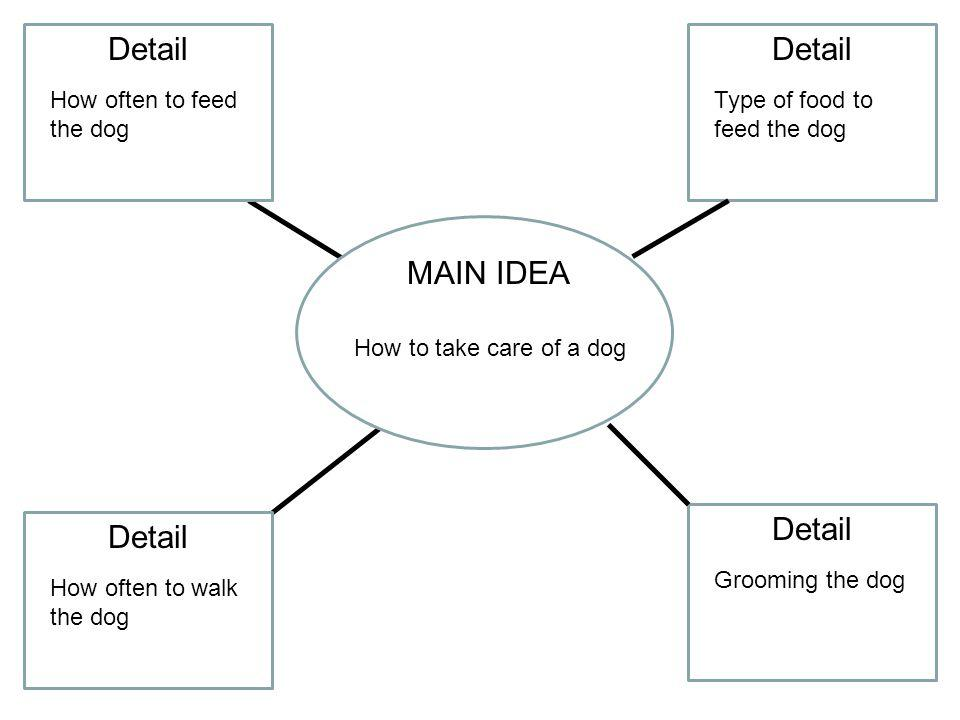 Detail Detail MAIN IDEA Detail Detail How often to feed the dog