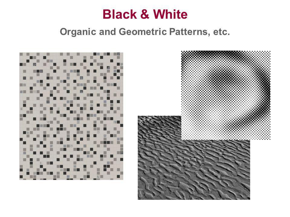 Organic and Geometric Patterns, etc.