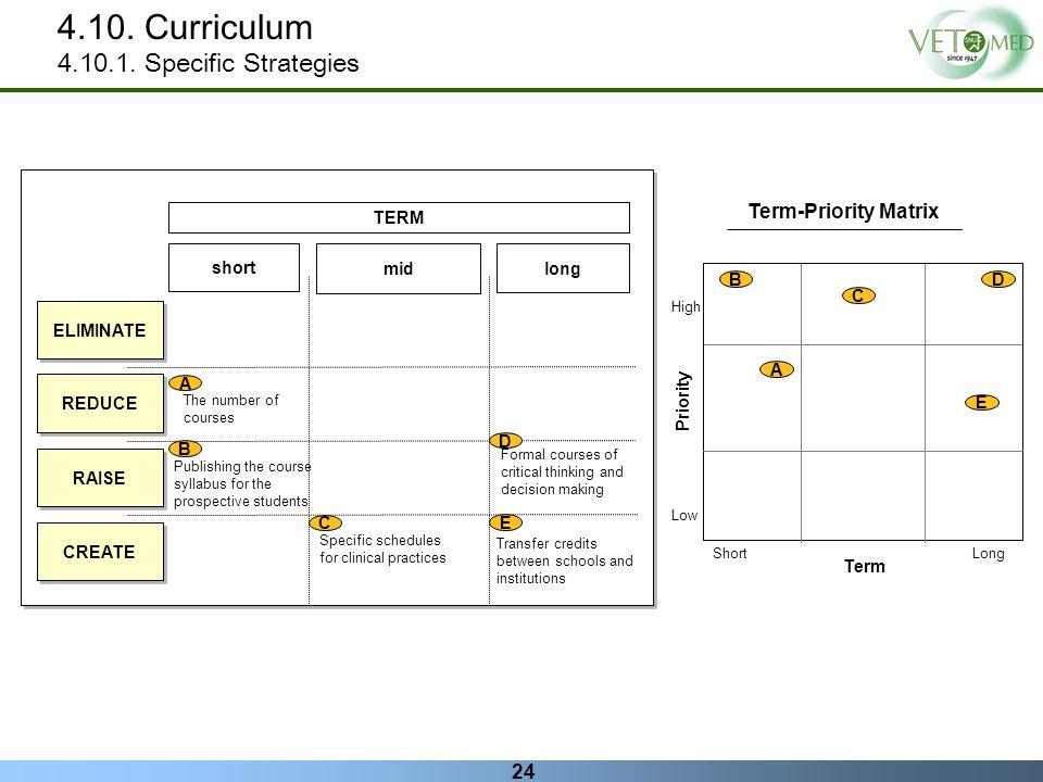 4.10. Curriculum 4.10.1. Specific Strategies Term-Priority Matrix TERM