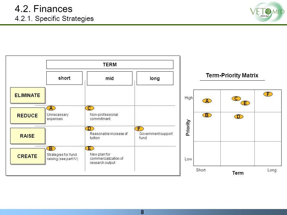 4.2. Finances 4.2.1. Specific Strategies Term-Priority Matrix TERM