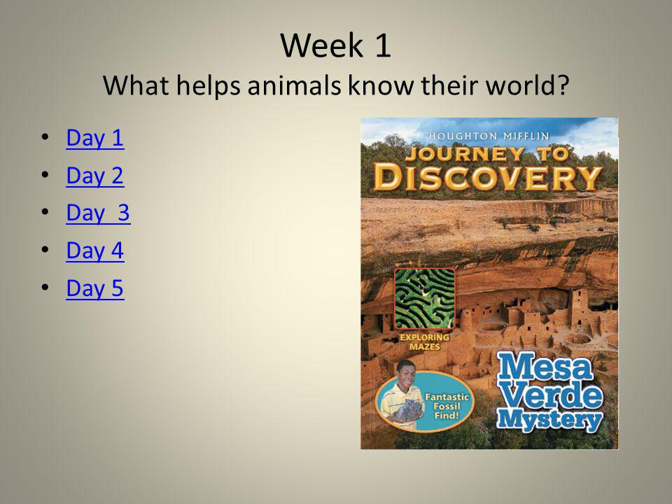 Week 1 What helps animals know their world