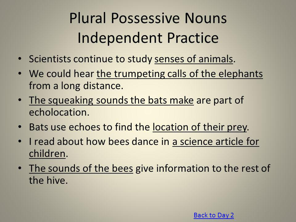 Plural Possessive Nouns Independent Practice