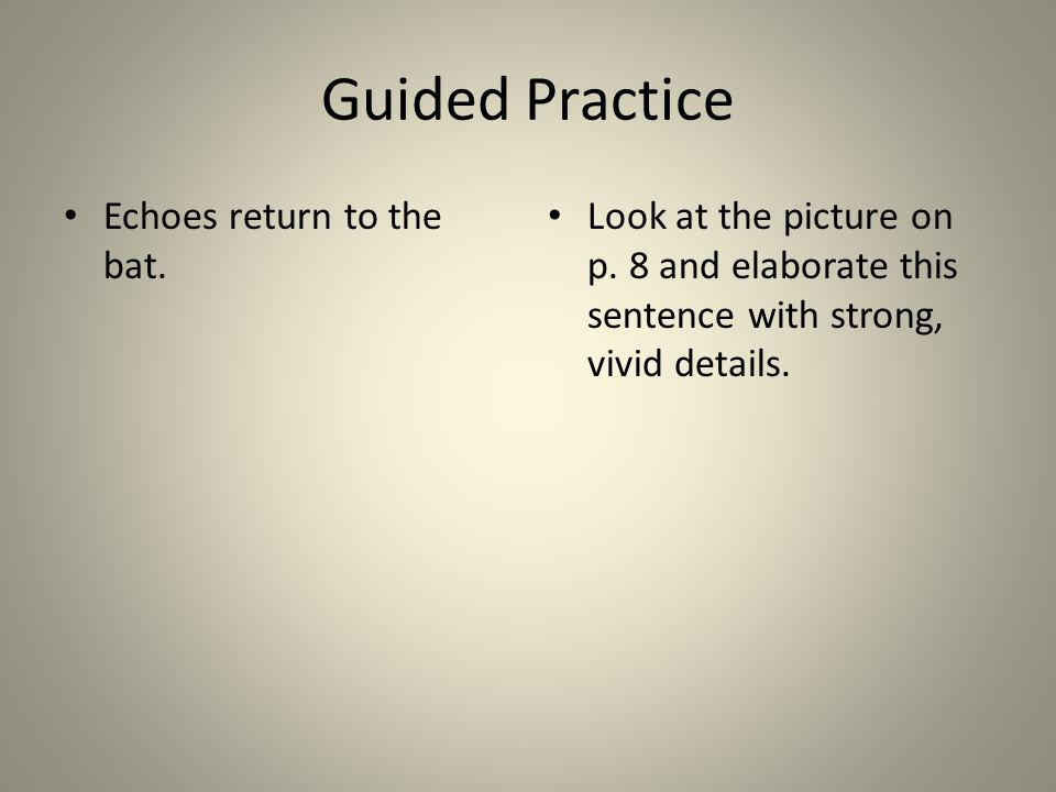 Guided Practice Echoes return to the bat.