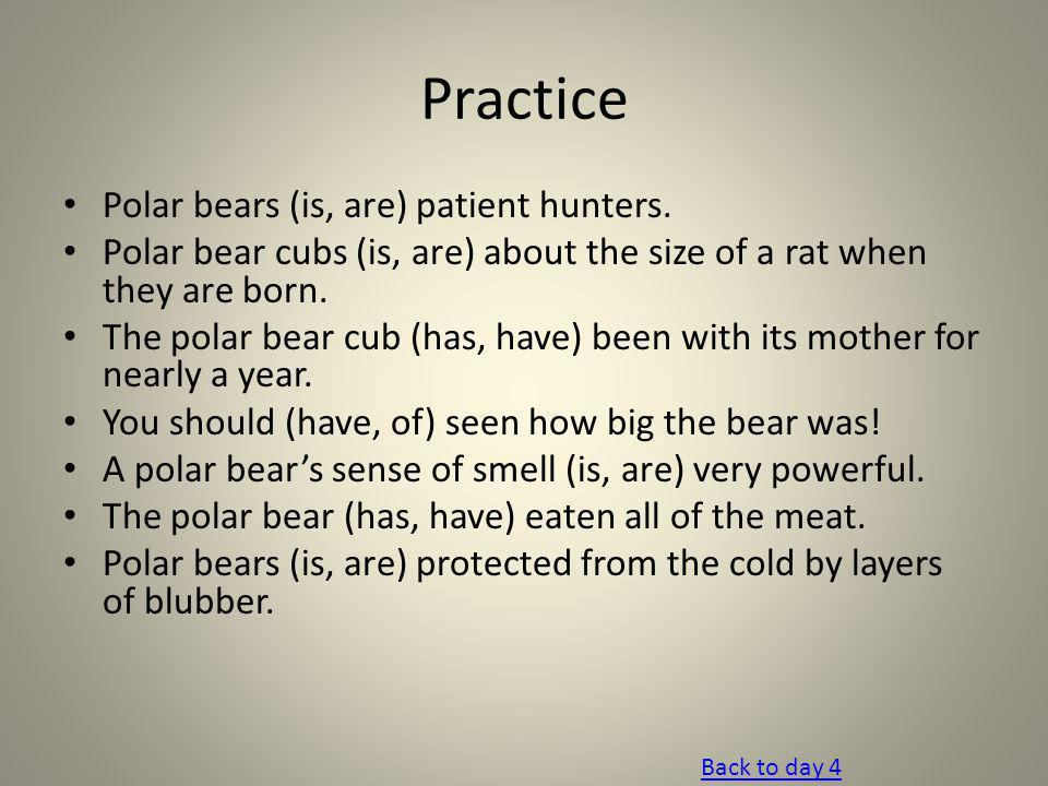Practice Polar bears (is, are) patient hunters.
