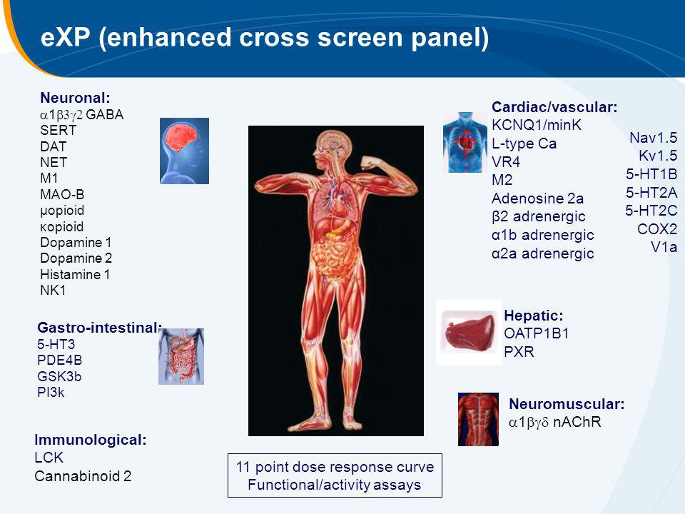 eXP (enhanced cross screen panel)