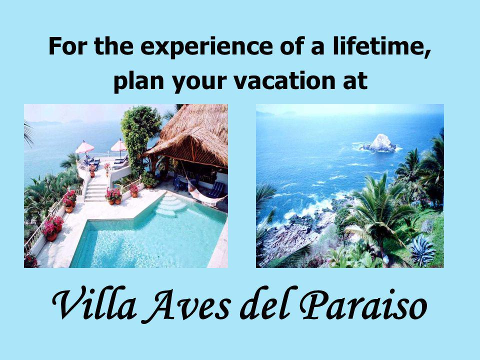 For the experience of a lifetime, plan your vacation at