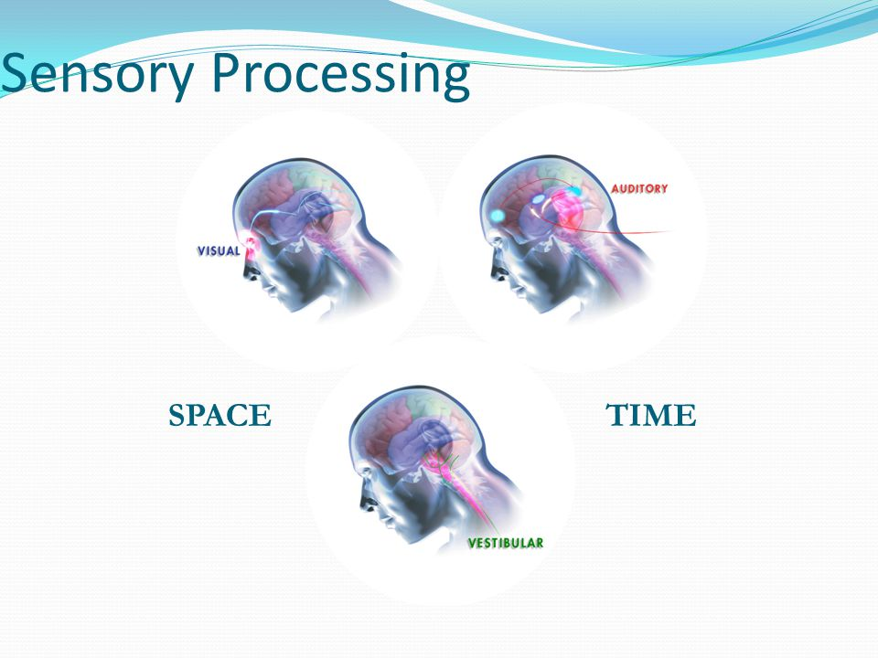 Sensory Processing SPACE TIME