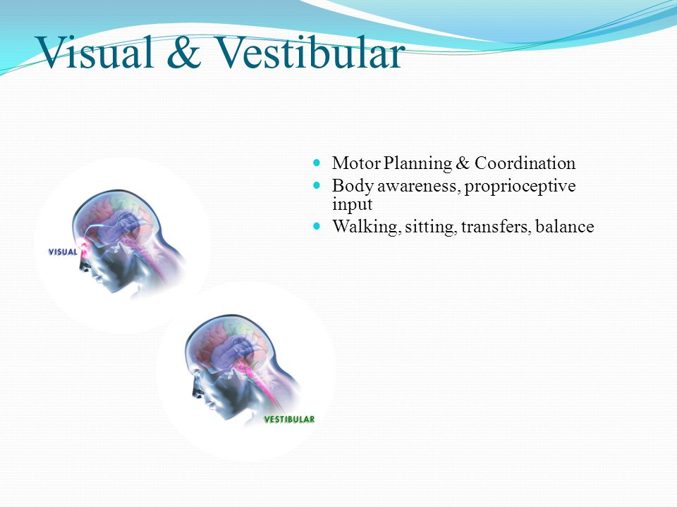 Visual & Vestibular Motor Planning & Coordination