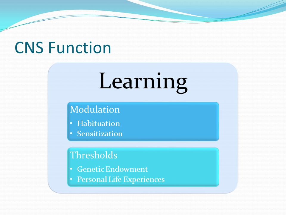 Learning CNS Function Modulation Thresholds Habituation Sensitization