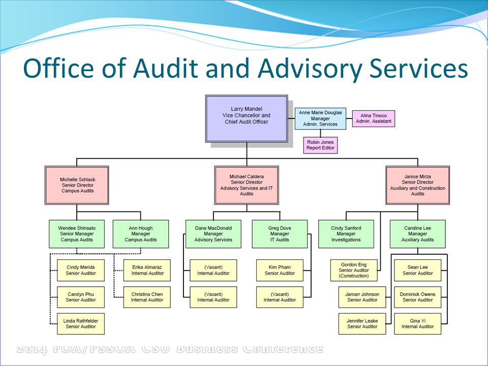 Office of Audit and Advisory Services