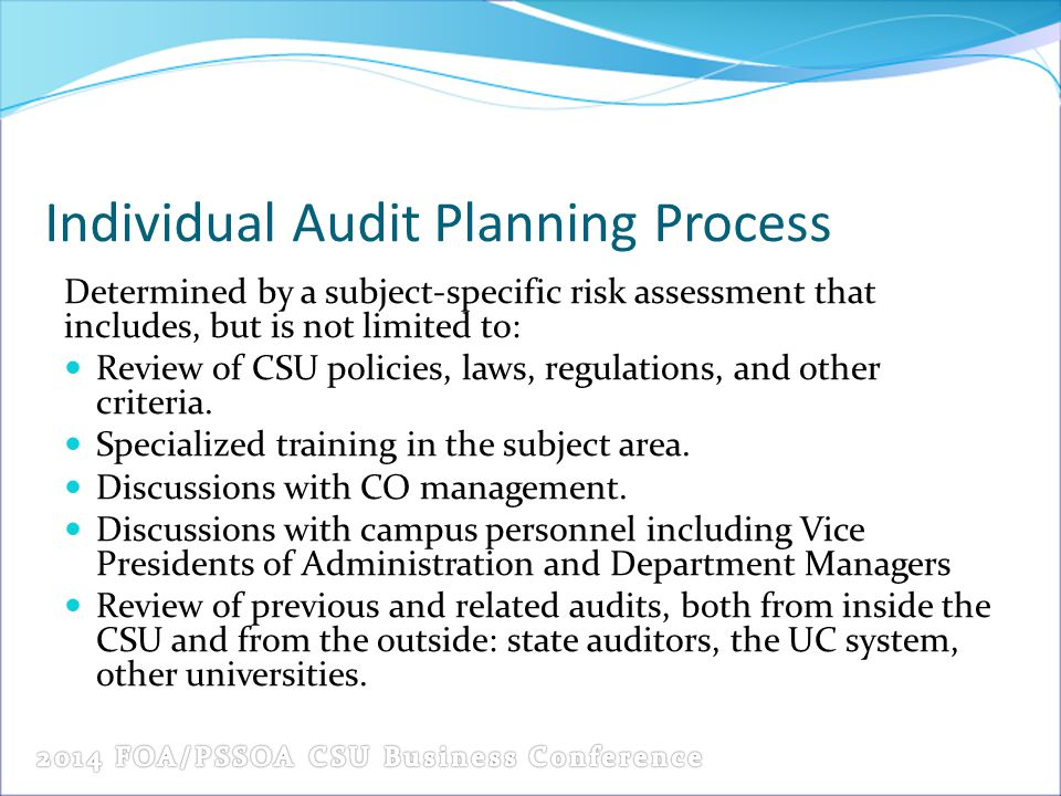Individual Audit Planning Process