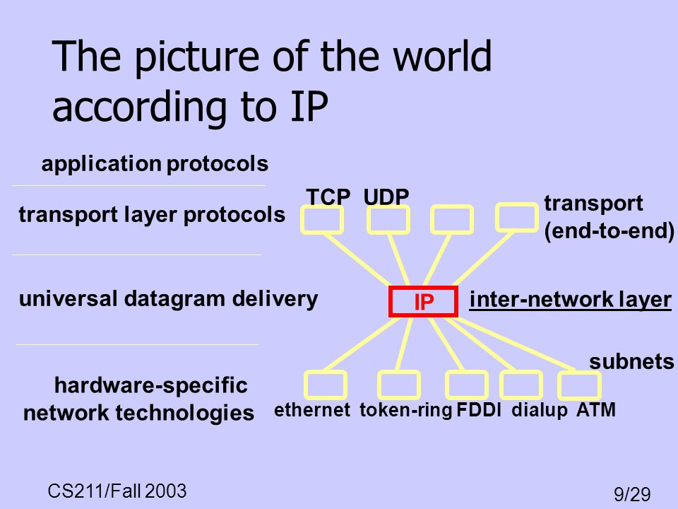 The picture of the world according to IP