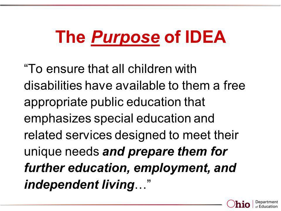 The Purpose of IDEA
