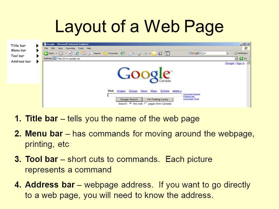 Layout of a Web Page Title bar – tells you the name of the web page