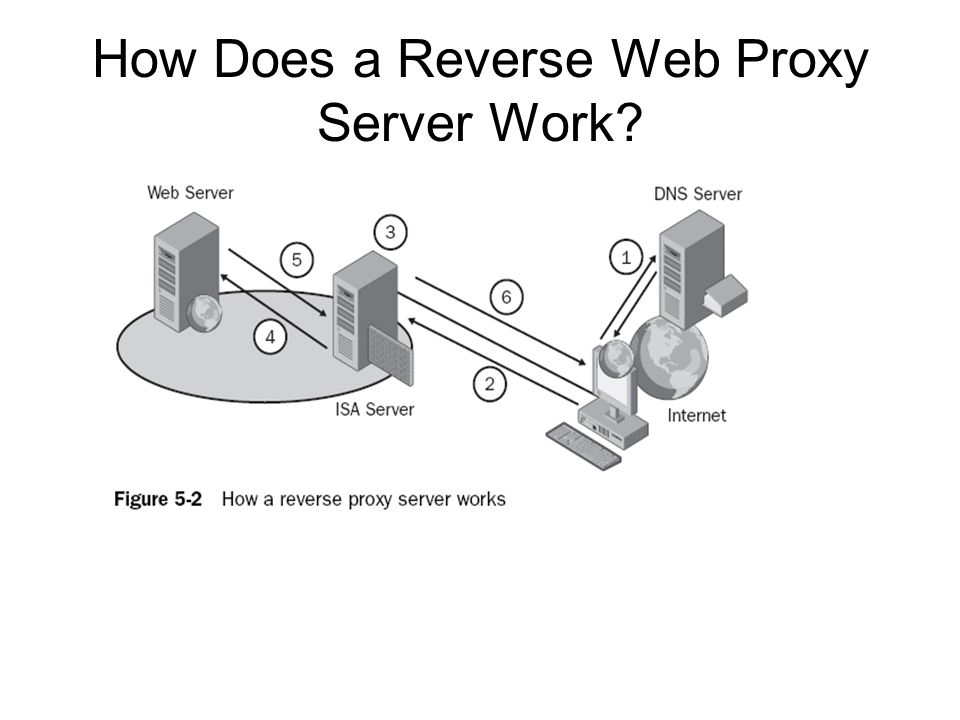 How Does a Reverse Web Proxy Server Work