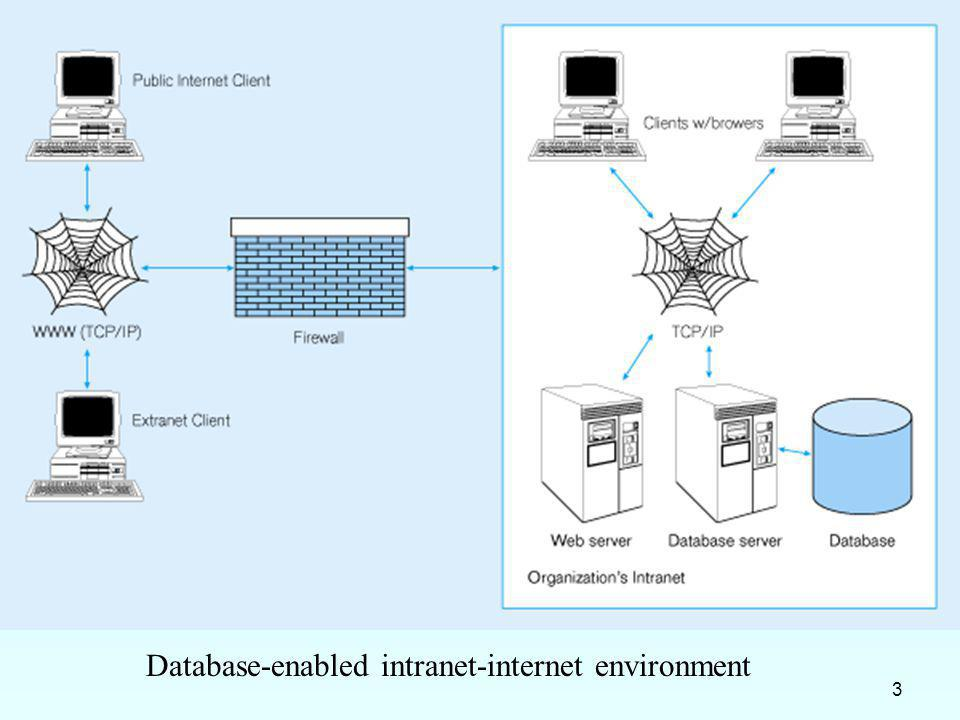 Database-enabled intranet-internet environment