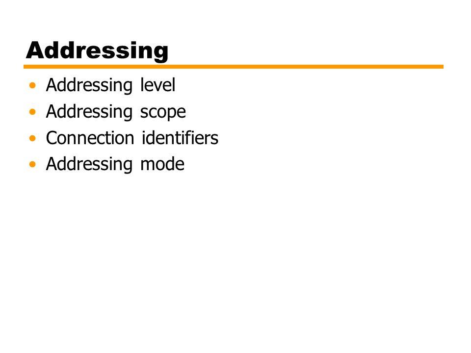 Addressing Addressing level Addressing scope Connection identifiers