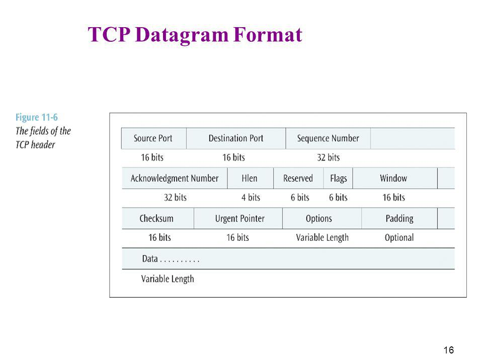 TCP Datagram Format