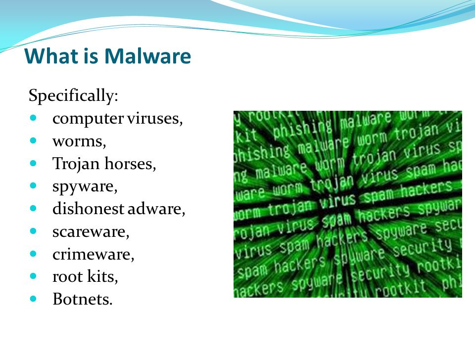 What is Malware Specifically: computer viruses, worms, Trojan horses,