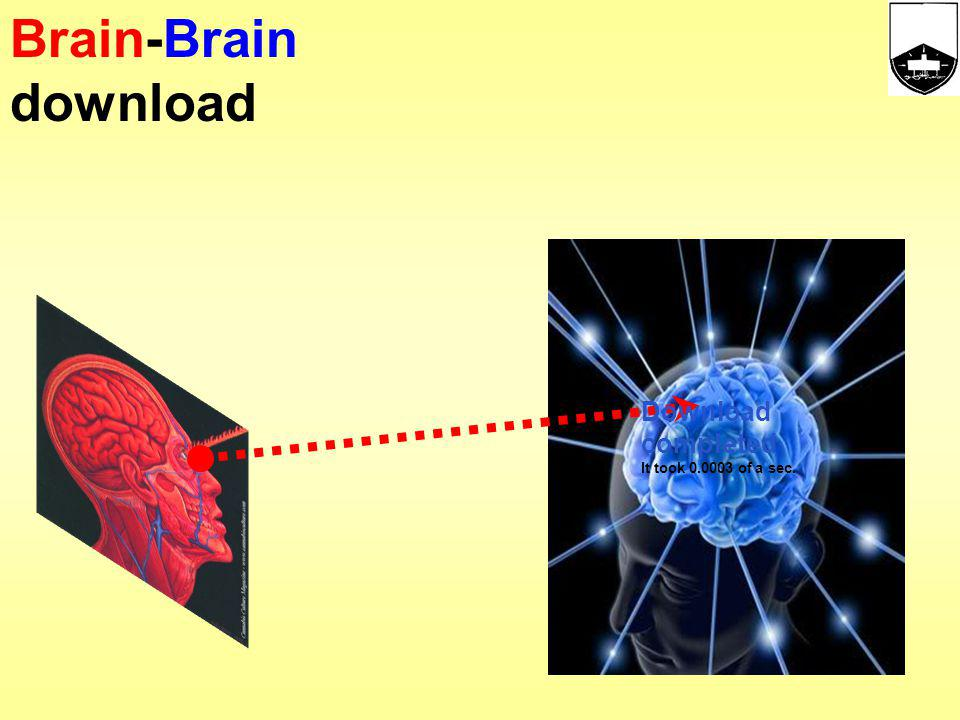 Brain-Brain download Download completed It took 0.0003 of a sec. 19 19