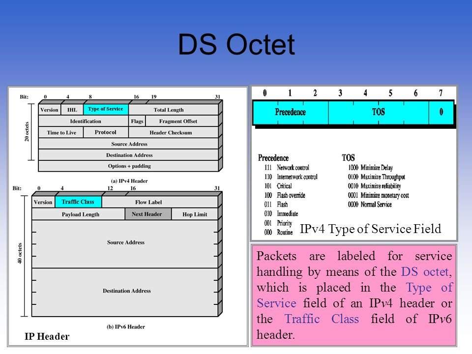 DS Octet IPv4 Type of Service Field
