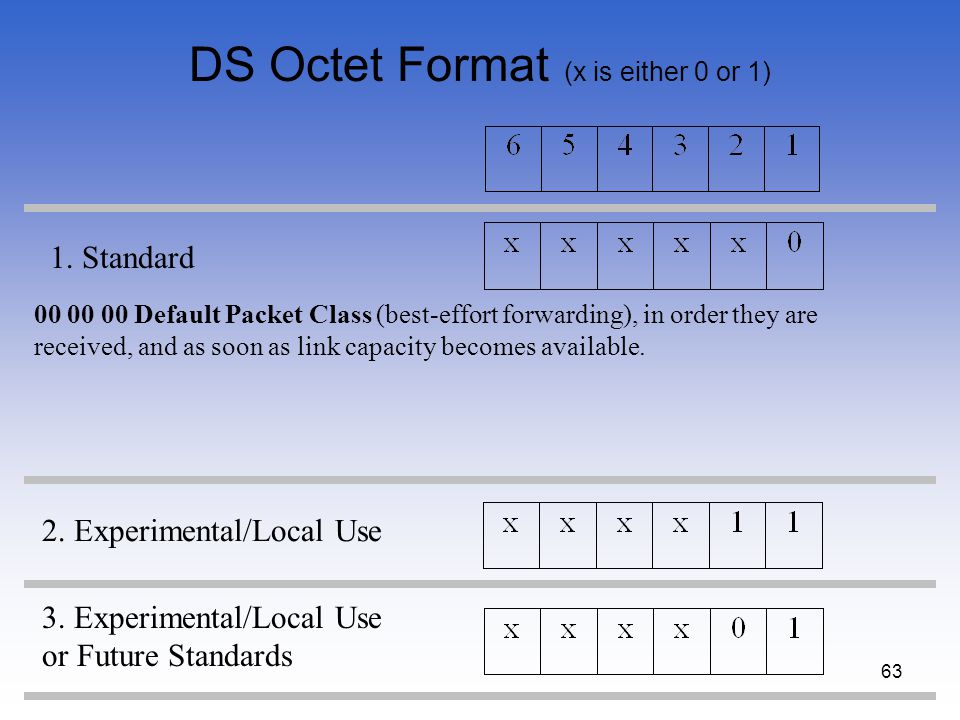 DS Octet Format (x is either 0 or 1)